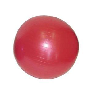 ジムボール ピンク 75cm GEB-750