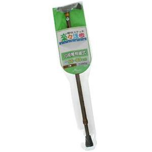 楽々活歩杖 10段伸縮 66-89cm 茶