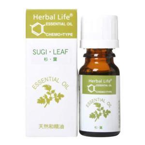生活の木 Herbal Life 杉(葉) 10ml