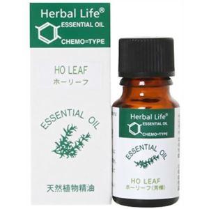 (まとめ買い)生活の木 Herbal Life ホーリーフ 10ml×2セット
