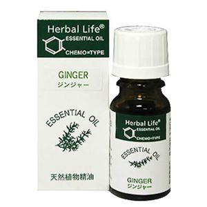 (まとめ買い)生活の木 Herbal Life ジンジャー 10ml×2セット