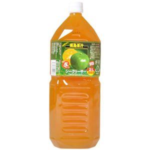 南島果汁 シークワーサー 2L