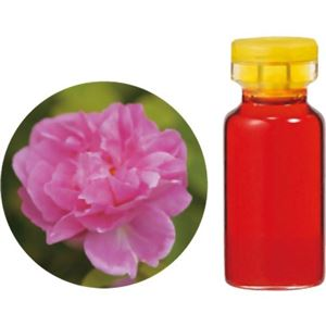 (まとめ買い)生活の木 Herbal Life 花精油 ダマスクローズAbs.(ブルガリア産) 1ml×2セット