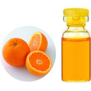 生活の木 Herbal Life Organic オレンジスイート 10ml - 拡大画像