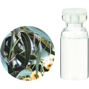 生活の木 Herbal Life Organic ユーカリ・グロブルス 10ml - 拡大画像