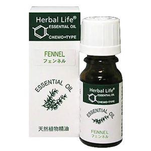 生活の木 Herbal Life フェンネル 10ml - 拡大画像