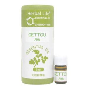生活の木 Herbal Life タイリン月桃 1ml - 拡大画像
