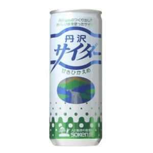創健社 丹沢サイダー(甘さひかえめ) 250ml×30本 - 拡大画像