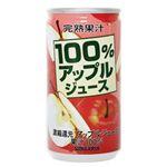 アップルジュース100% 190g*30本入