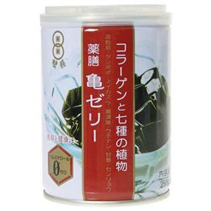 コラーゲンと七種薬草 亀ゼリー 250g*6缶