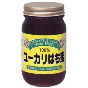 純正 ユーカリ蜂蜜 500g - 拡大画像