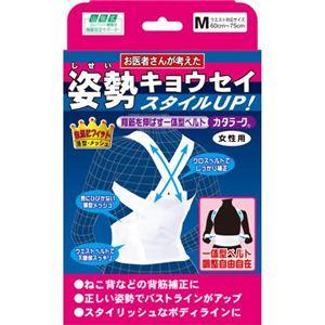 山田式 姿勢キョウセイ カタラーク 女性用 M - 拡大画像