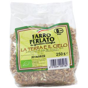 有機栽培 ファッロペルラート(スペルト小麦) 250g 【5セット】 - 拡大画像