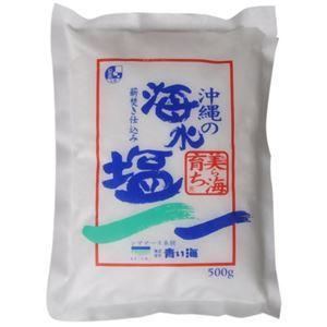 沖縄の海水塩 自然海塩 500g 【2セット】