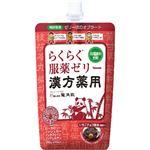 龍角散漢方服用ゼリー いちごチョコ風味 200g 【11セット】
