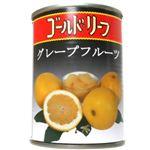 (まとめ買い)グレープフルーツ シロップ漬け 540g×8セット