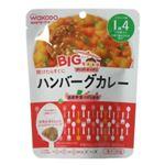 BIGサイズのグーグーキッチン ハンバーグカレー 100g 【18セット】