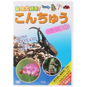動物大好き!こんちゅう スペシャル100 【DVD 2枚組】