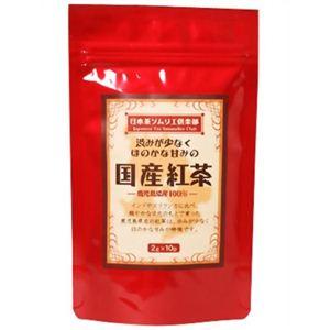 日本茶ソムリエ倶楽部 国産紅茶 ティーバッグ 2g*10P 【6セット】