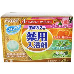 バスキング 炭酸ガスの薬用入浴剤 くつろぎアソート 20錠入 【6セット】