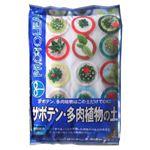 プロトリーフ サボテン多肉植物の土 5L 【3セット】