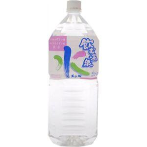 飲む温泉水 天水翔 2L 【6セット】