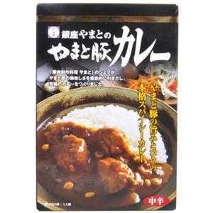銀座やまとのやまと豚カレー【13食セット】