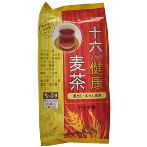十六プラス健康麦茶 ティーバッグ 20袋入 【5セット】