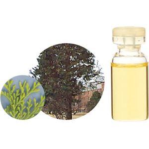 生活の木 Herbal Life 和精油 ヒバ 10ml【2セット】 - 拡大画像