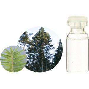 生活の木 Herbal Life 和精油 モミ 3ml【2セット】 - 拡大画像