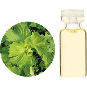 生活の木 Herbal Life 和精油 紫蘇 1ml【2セット】 - 拡大画像