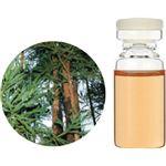 (まとめ買い)生活の木 Herbal Life 和精油 杉(木部) 3ml×2セット