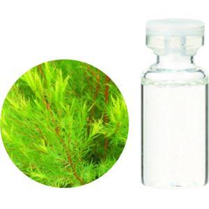 生活の木 Herbal Life Organic ティートゥリー 3ml【2セット】 - 拡大画像