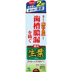 (まとめ買い)生葉(しょうよう)b 100g×4セット