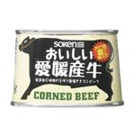 (まとめ買い)創健社 おいしい愛媛産牛コンビーフ 100g×3セット