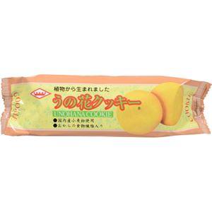 (まとめ買い)キング製菓 うの花クッキー×22セット