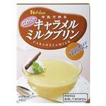 キャラメルミルクプリン 47g 【28セット】