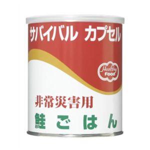 サバイバルカプセル 鮭ごはん 【6セット】