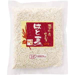 (まとめ買い)創健社 栃木県産はと麦 ひき割粒 220g×4セットの詳細を見る