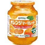 カンピー オレンジマーマレード 850g 【3セット】