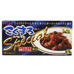 こくまろカレー スペシャル (辛口) 205g 【24セット】
