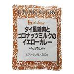ハウス タイ風鶏肉とココナッツミルクのイエローカレー 200g 【10セット】