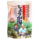 特別栽培生姜使用 しょうが湯 20g*4袋 【10セット】
