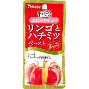 (まとめ買い)カレーパートナー リンゴとハチミツペースト 40g×42セット - 拡大画像