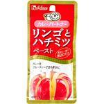 (まとめ買い)カレーパートナー リンゴとハチミツペースト 40g×42セット