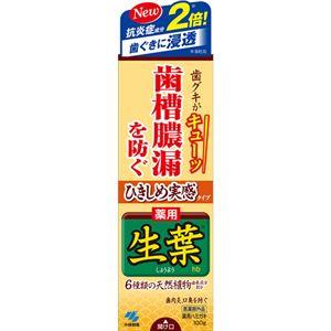(まとめ買い)ひきしめ生葉 100g×4セット