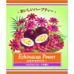 生活の木 おいしいハーブティー エキナセアパワー ティーバッグ 2g×100袋 - 拡大画像