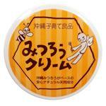 (まとめ買い)はっぴーONE おきなわみつろうクリーム 25g×2セット