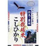 日生 豊岡産(特別栽培)コシヒカリ 5kg