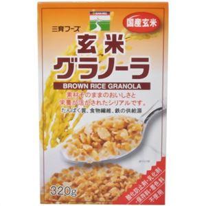 【ケース販売】三育 玄米グラノーラ 320g×12個入の詳細を見る